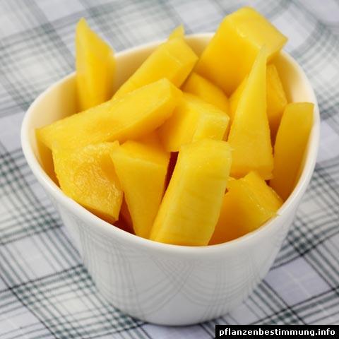 mango-fruchtfleisch